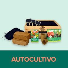 Amplo catálogo de Kits Horta em Casa na nossa loja online