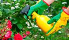 Fungicidas eco