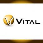 VITAL BALL